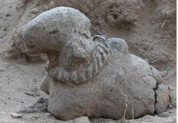 Porunthal: Terracotta Humped Bull, 1st cent BCE