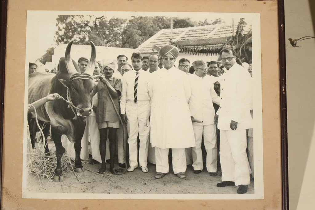 His Highness Maharaja Sri Sir. Jayachamarajendra Wadiyar Bahadur, Maharaja of Mysore, GCB, GCSI and head of the Amrit Mahal Breeding station, Mysore (18 July 1919 – 23 September 1974) during his royal visit along with the erstwhile Pattagar N.S.S.Mandradiar and President-to-be R. Venkatraman.